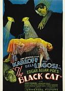 Черный кот (Black Cat, 1934) — смотреть онлайн бесплатно видео и всю информацию об этом фильме ужасов