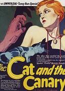 Кот и канарейка (Cat and the Canary, 1927) — смотреть онлайн бесплатно видео и всю информацию об этом фильме ужасов