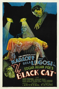 Черный кот (1934)