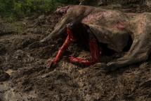 Техасская резня бензопилой: Кожаное лицо (2017) — кадр 49