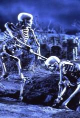 Зловещие мертвецы 3: Армия тьмы (1992), фото 8