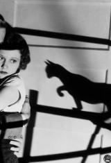 Черный кот (1934), фото 4