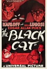 Черный кот (1934), фото 10