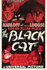 Черный кот (1934), фото 11