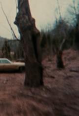 Зловещие мертвецы (1981), фото 2