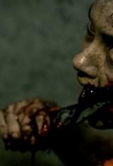 Зловещие мертвецы: Черная книга (2013), фото 1
