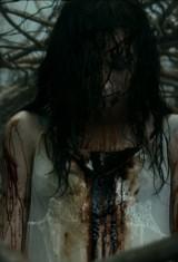 Зловещие мертвецы: Черная книга (2013), фото 33