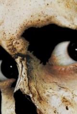 Зловещие мертвецы 2 (1987), фото 13