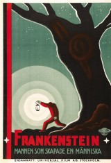 Франкенштейн (1931), фото 13