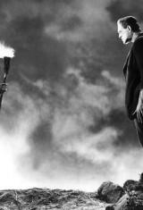 Франкенштейн (1931), фото 7