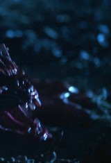 Джейсон отправляется в ад: Последняя пятница (1993), фото 1