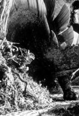 Кинг Конг (1933), фото 7