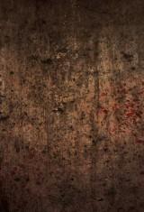 Комната смерти (2017), фото 1