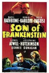 Сын Франкенштейна (1939), фото 13