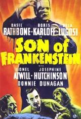 Сын Франкенштейна (1939), фото 20
