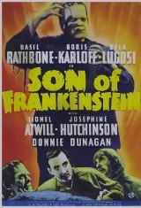 Сын Франкенштейна (1939), фото 12