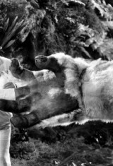 Сын Кинг Конга (1933), фото 4