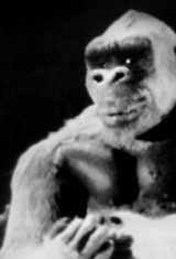 Сын Кинг Конга (1933), фото 5